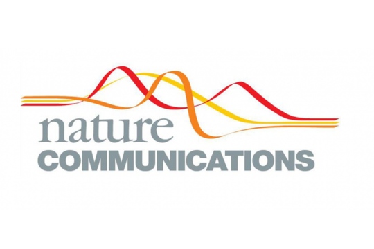 Publikation in Nature Communications akzeptiert